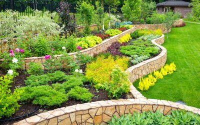 Everything You Need To Know About Landscaping