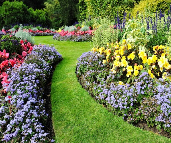 Simple Steps To Transform Your Garden